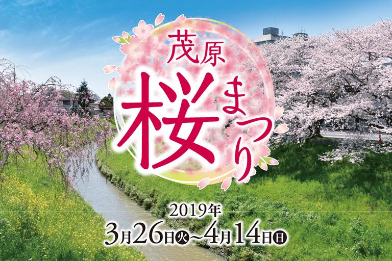 茂原桜まつり特設サイト オープン!